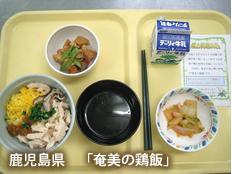 鹿児島県「奄美の鶏飯」